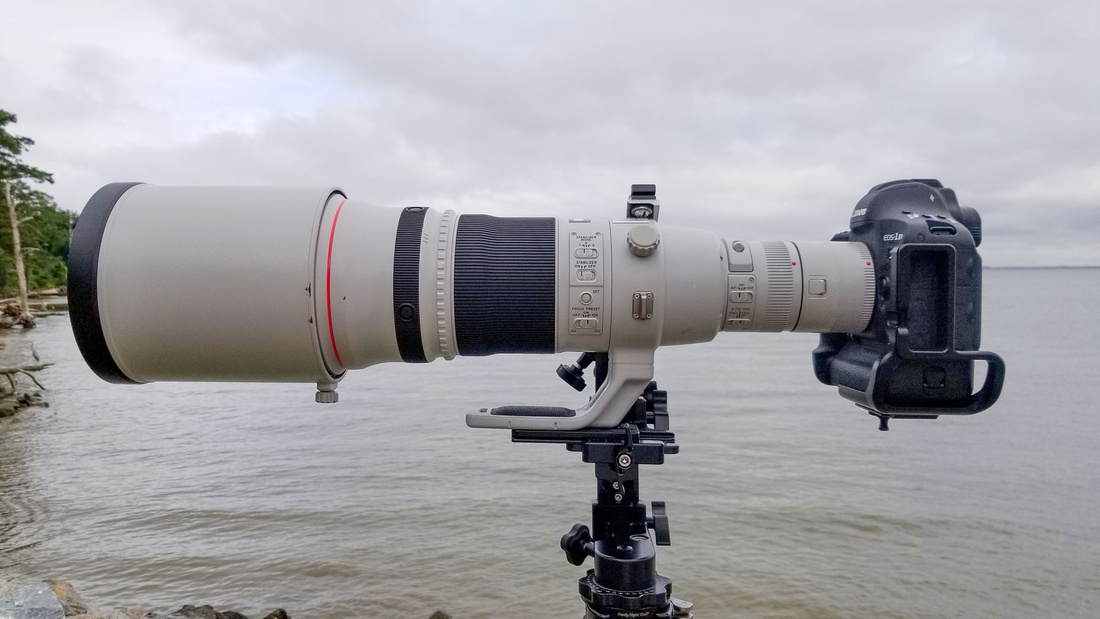 500 side view Canon foot